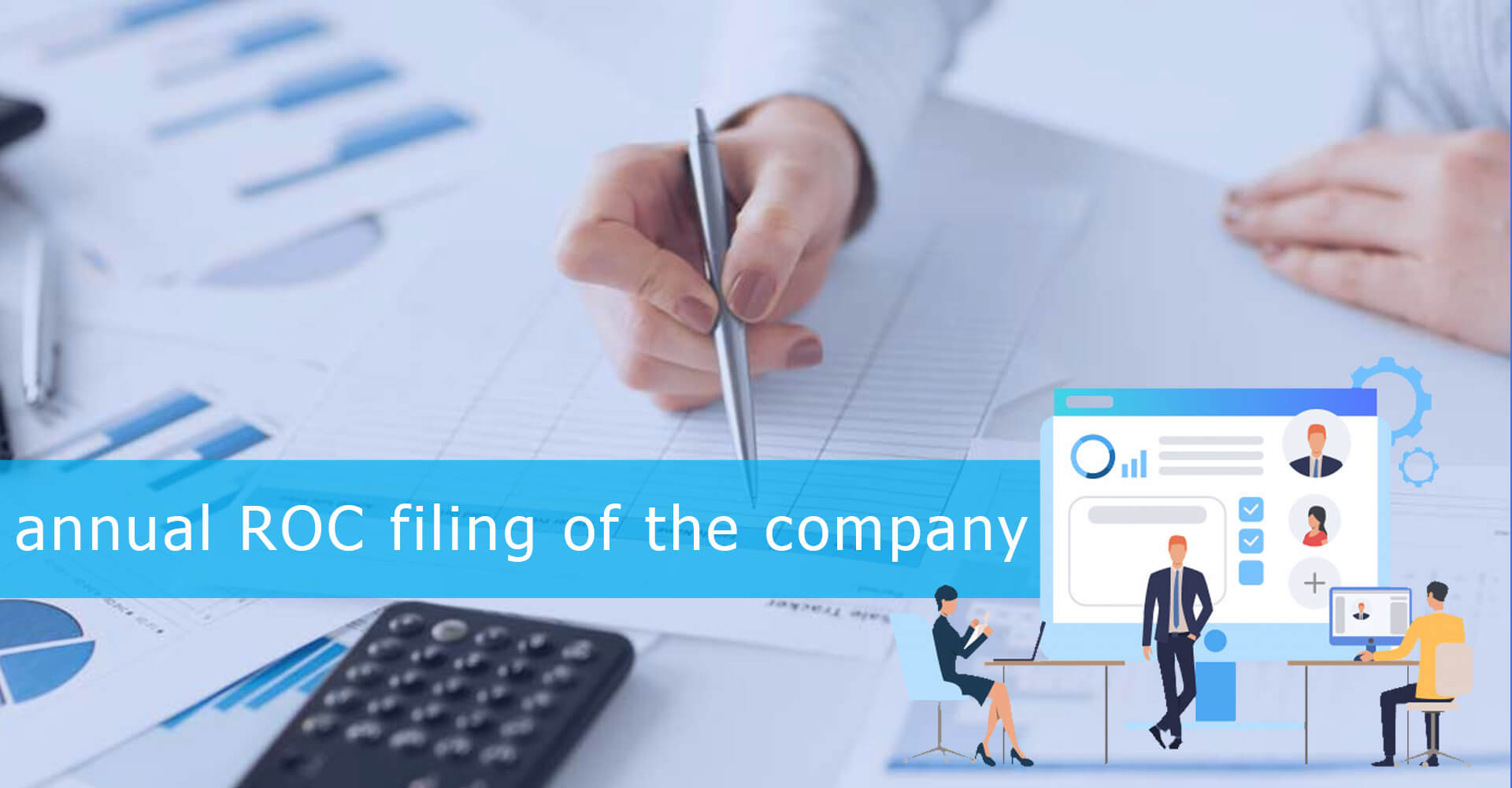 Annual ROC Filing for Company